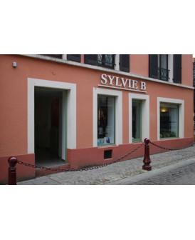 SYLVIE B coiffure Sceaux